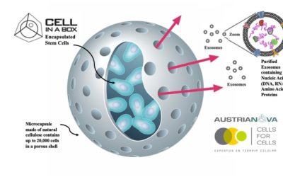 May 21st 2020: Austrianova and Cells for Cells publish paper on novel method to produce exosomes from stem cells